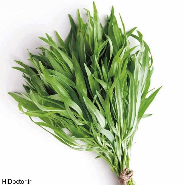 بررسی سبزی معطر ترخون