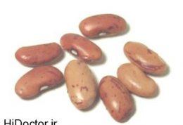 آیا دیابتی ها می توانند لوبیا بخورند