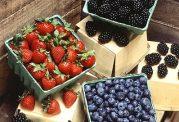 چرا توت برای دیابتی های نوع 2 مفید است