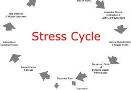 روانشناسی استرس در حین ورزش کردن