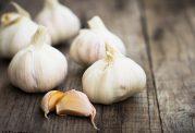 پنج خطای  شناخته شده  در مصرف سیر