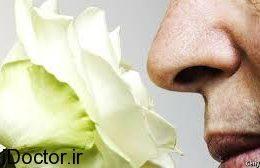 ضعف در بویایی و این خطرات