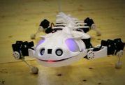 رباتی نجات دهنده شبیه خزندگان