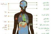 خطرات کشنده دخانیات (سیگار، قلیان، پیپ و ...)