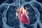 چگونه بطور سریع و کارآمد فشار خون بالا را کاهش دهیم