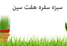 مدل سبزه ویژه عید نوروز و سفره هفت سین