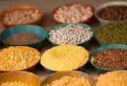 به خاطر هفته بهداشت جهانی: نکاتی درباره ایمنی غذا