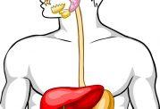 5 نشانه خطرناک از بیماری های روده