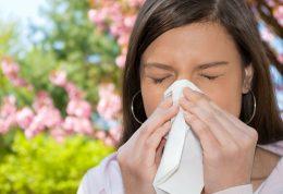 بهار با آلرژی های خاص خود