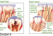 مطالبی پیرامون دندانپزشکی بیولوژیک