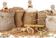 رژیم غذایی پارینه سنگی چه نوع رژیمی است