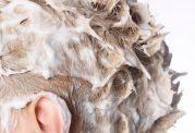 مواد لازم جهت ساخت ماسک مو برای انواع موها