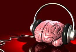 تشخیص صدا توسط مغز