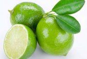 عکس های میوه لیموترش