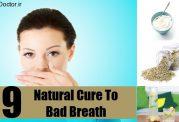 ماست طبیعی برای بوی بد دهان