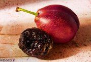 عکس های میوه آلوبخارا