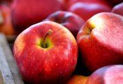 با مصرف سیب کنکور بهتری بدهید