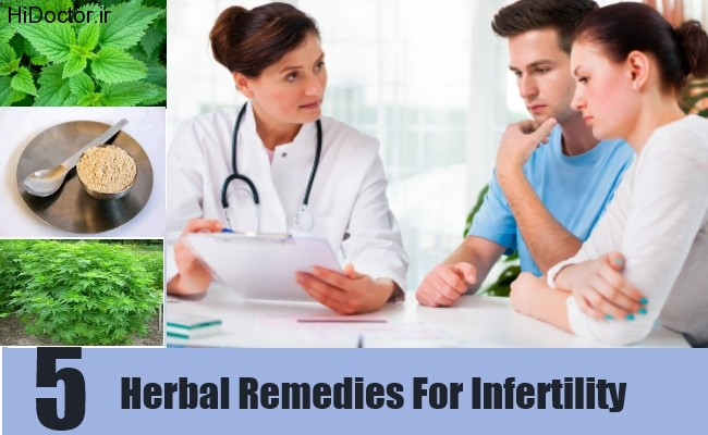 5-Herbal-Remedies-For-Infertility1