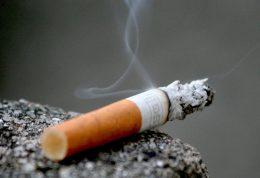 هجوم انواع میکروبها به بدن افراد با سیگار