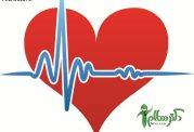 11 ماده غذایی مفید برای سلامت قلب