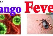 از مصرف گوشت و جگر بپرهیزید! تب کریمه کنگو در کمین است!