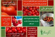 پوستر در مورد خواص فوق العاده گوجه فرنگی
