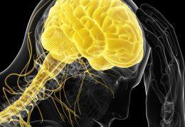 ناراحتی های روحی در ارتباط با مغز