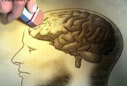 مراقبت از ذهن در برابر پیری مغز