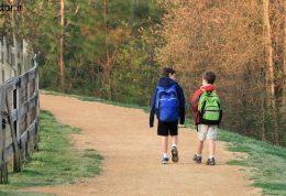 افزایش یادگیری در طبیعت