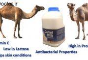 خواص درمانی شیر این پستاندار