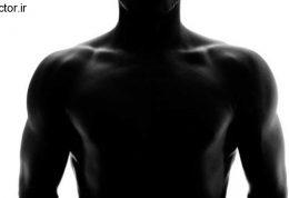 معرفی 3 تیپ بدنی و عضه سازی آنها