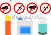 مراقبت های مهم در زمینه حشره کش ها