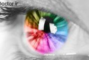 تنوع رنگ ها از دید خانم ها