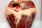اگر از نارسایى قلب رنج می برید این مطلب را بخوانید