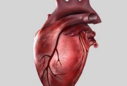 آیا از علت سکته ی قلبی با خبر هستید؟