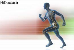 دانستنی های ورزشی برای ورزشکاران تازه کار