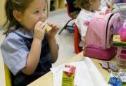 خورد و خوراک کودکان در مهد