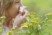 آلرژی زا ترین موارد
