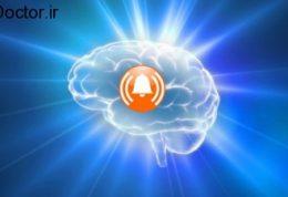 دستور مغز برای دوستیابی