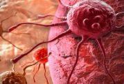 شیوع بی رویه سرطان