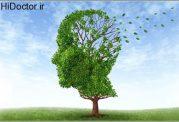 عوامل زوال عقل پیرامون ما