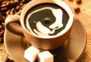 پیامدهای مضر مصرف قهوه بر ناباروری