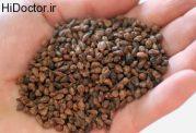 خواص شفابخش این دانه را می دانید؟