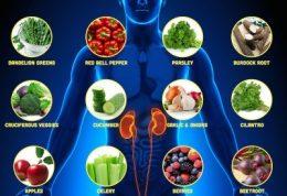 رعایت این توصیه ها به خاطر سلامتی کلیه