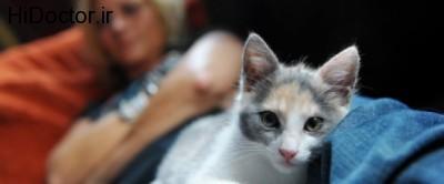 حیوانات خانگی و ریسک ابتلا به این امراض