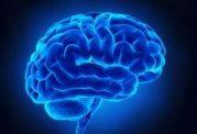 داروهای مضر برای مغز و حافظه
