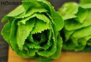 چه نوع مواد غذایی رژیمی در فصل پاییز استفاده کنیم؟