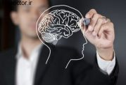 عجیب و غریب ترین یافته ها در مورد مغز