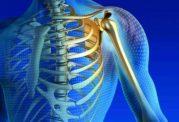 کاهش ویتامین ب 3 و پوک شدن استخوان