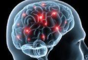 توصیه های متخصصین برای محافظت از مغز